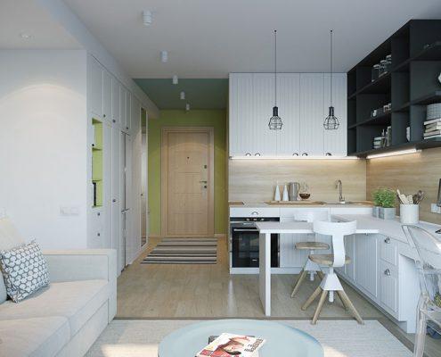 кухня-прихожая-зонирование