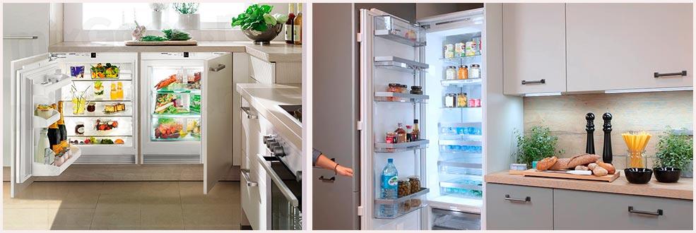 встроенные-холодильники-на-кухне-фото